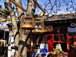 Beijing-Siheyuan-Tours